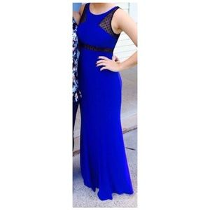 Cache Royal Blue Gown